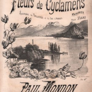 Fleurs de Cyclamens