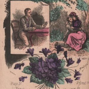 Violette embaumée