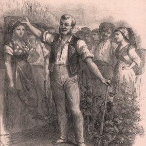 Chant du vigneron (Le)